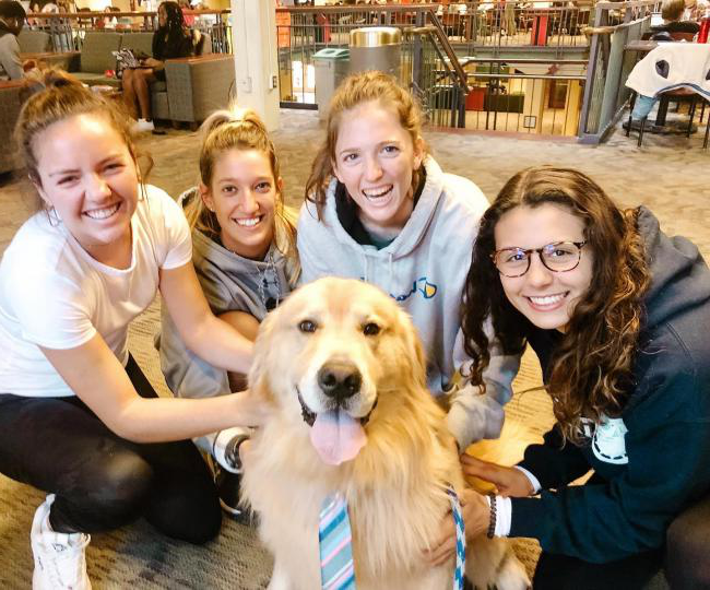 puppy attracts girls with his adorable tie