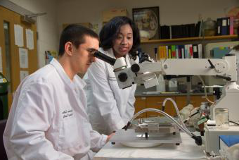Two students stand at lab bench, one is looking through microscope