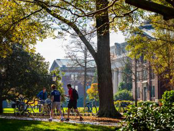 Students walk to class surrounded by trees and brick paths