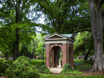 The Old Well Surrounded by Trees